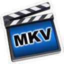 iOrgSoft MKV Converter