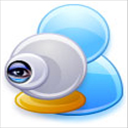 Webcam Surveillance Monitor