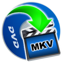 iOrgSoft DVD to MKV Converter