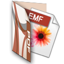 AZ EMF to PDF Converter