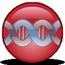 Gene Designer