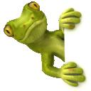 SpyCam Lizard