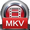 4Videosoft MKV 動画変換