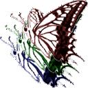 ColorNavigator