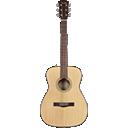 ButtonBeats Player Acoustic Guitar