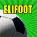 Elifoot 2014