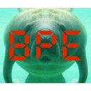 Bmanatees Packet Editor