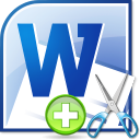 MS Word Add or Remove Data, Text & Characters Software