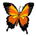Pixpedia Publisher