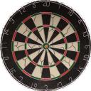 Darts 16