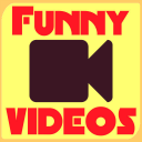 Funny Videos Must Watch