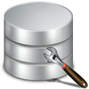 Custom Database Software