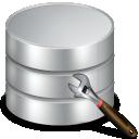 Custom Database Software