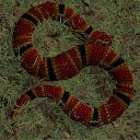 SnakeWorld Game