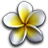 Vacation Quest (The Hawaiian Islands) [PopCap]