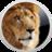 Lion Skin Pack