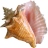 3Planesoft Sandy Beach 3D Screensaver
