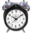 Dunnabyte Alarm 2008