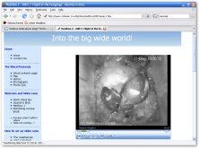A web page with an embedded video