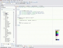 CSS insertion