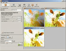 Tone Mapping Tool