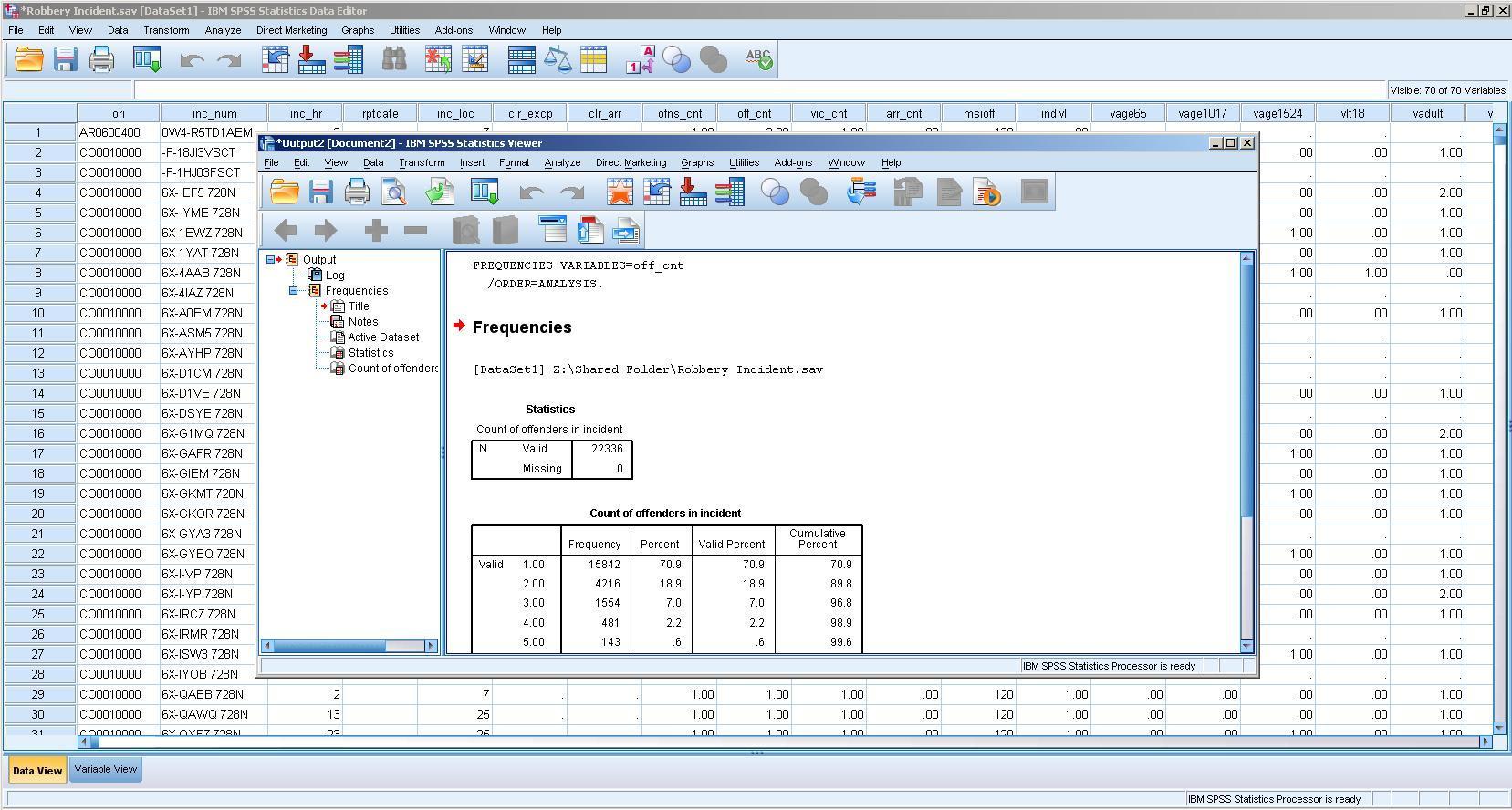 SPSS Statistics Viewer - Frequency Statistics
