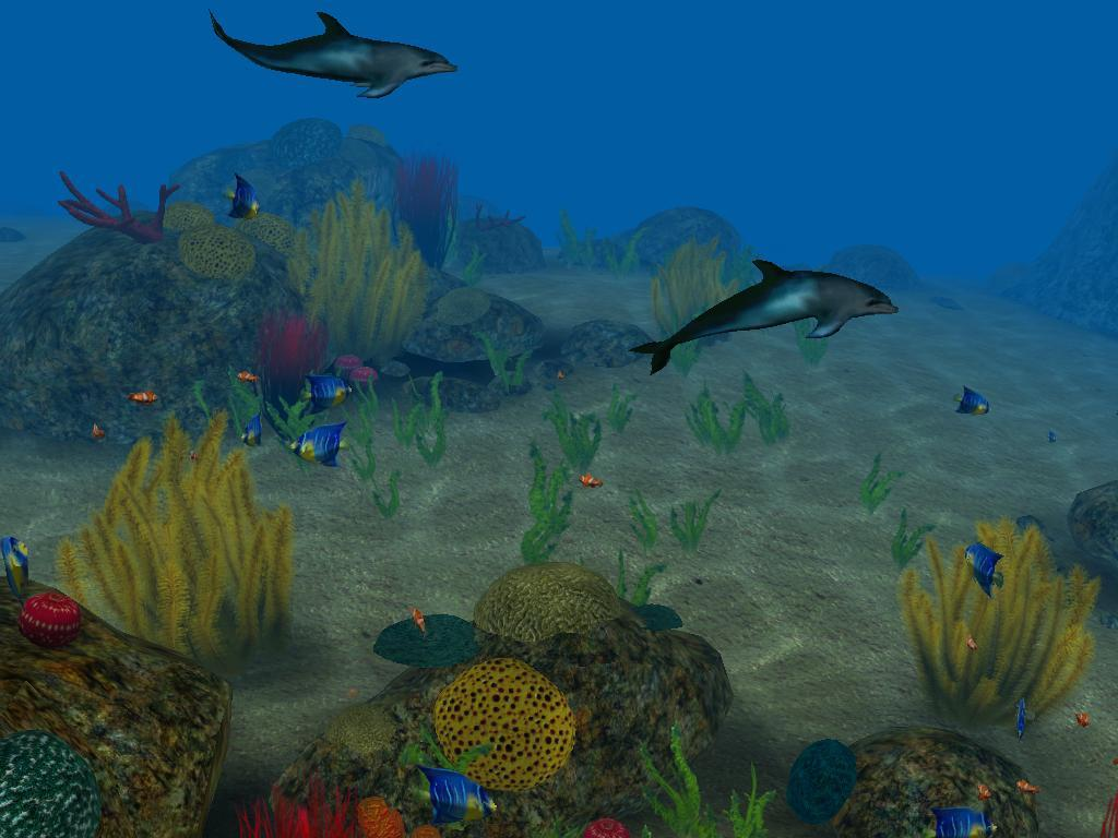 Under The Sea Slideshow Screensaver Enjoy Underwater Life