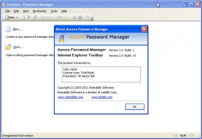 password manager internet explorer