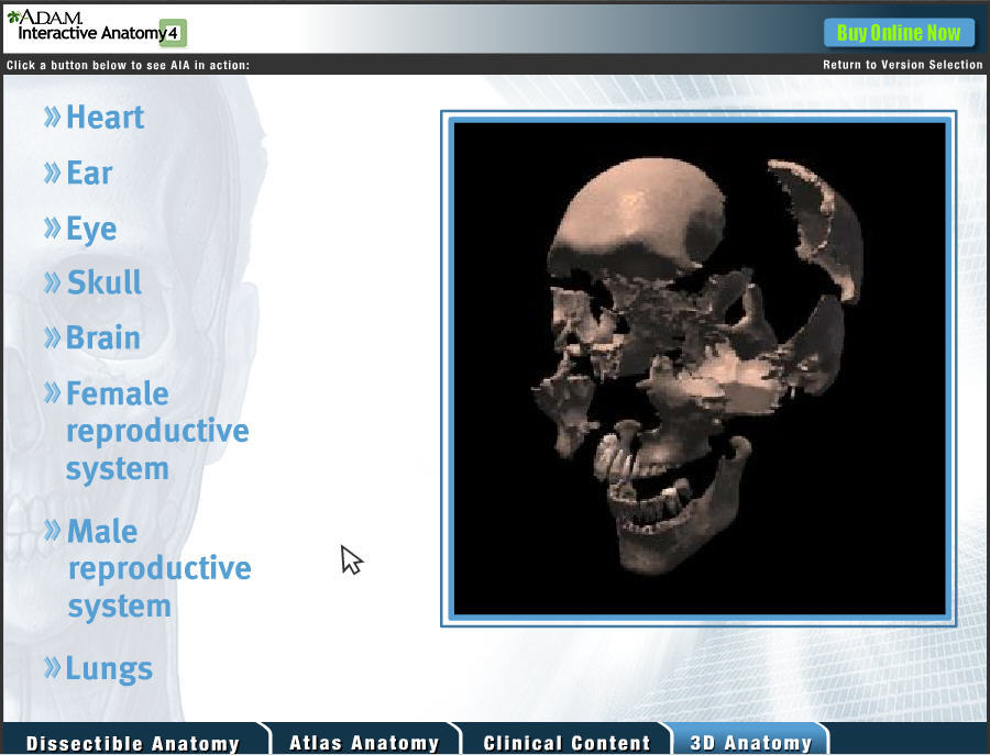 A.D.A.M. Interactive Anatomy - Free download and software ...