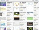 Widget browser startup view