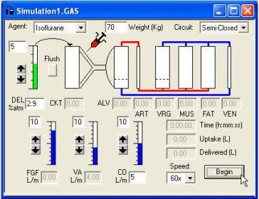 Gas Man Anesthesia Simulator Download (GasMan.exe)