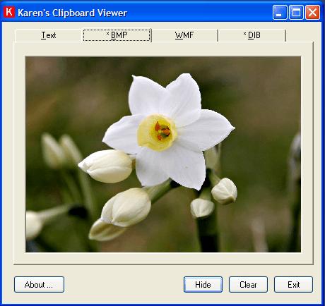 Viewing BMP image in Karen's Clipboard Viewer.