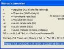 Manual Conversion Parameters