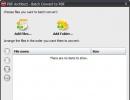 Batch Conversion Window