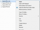 Option in the Context Menu