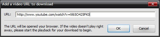 Adding Online Video URL