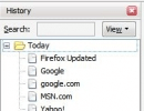 The browser history