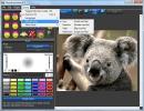 JPEG Quality Options