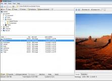 Main Window - Viewer Tool