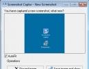 "The ""New Screenshot"" Window"