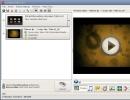 Input Files Selection