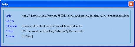 Video Info window