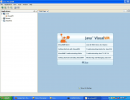 VisualVM start page.