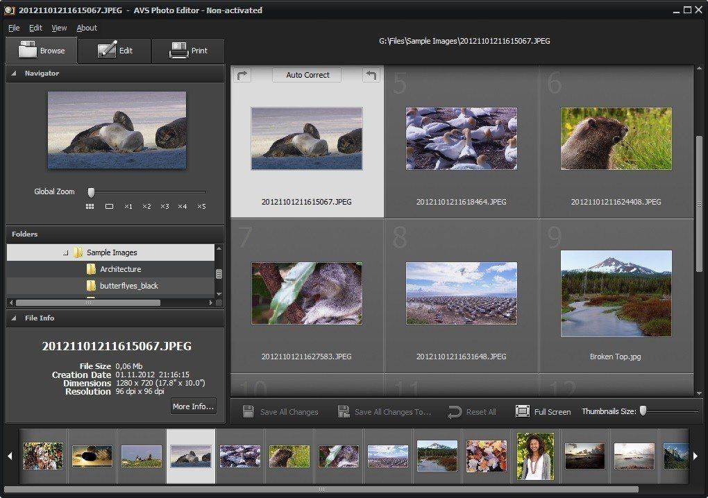 Browse Photos