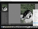 Lightroom Plug-In