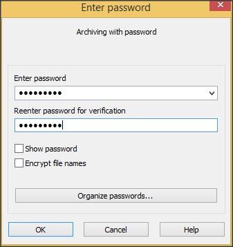 Password Protection Window