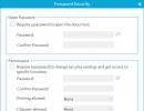 Password Security Window