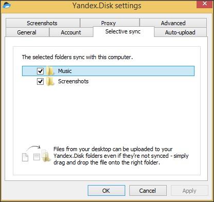 Settings Window - Selective Sync Tab