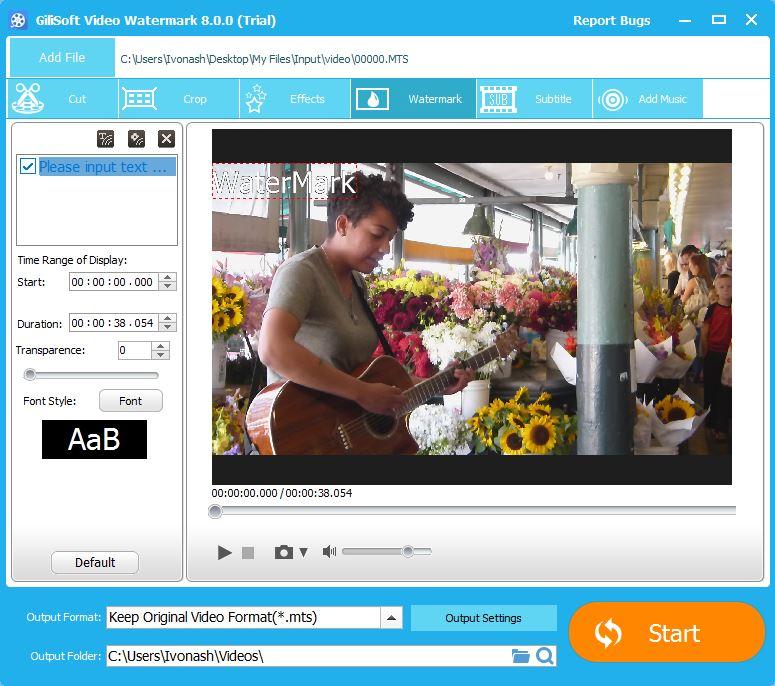 Video Watermarking Tool