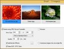 Image Emailing Window
